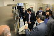 افتتاح واحد صندوق های اجاره ای بانک ملی ایران در شعبه ممتاز ارومیه